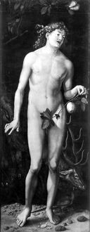 adam eve/adam oil wood hans baldung grien painting 1507