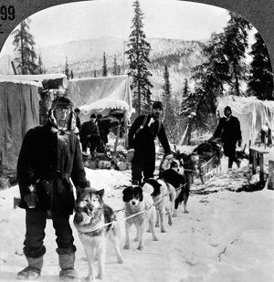 ALASKAN DOG SLED, c1900. A dog sled north of Arctic City, Alaska, on a branch of the Yukon River