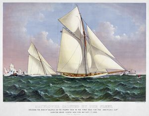 seascapes/americas cup 1886 mayflower saluted fleet