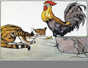 'The Cat, the Cock, and the Young Mouse&#39