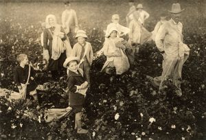 CHILD LABOR: COTTON, 1913. Family of cotton pickers near Waxahachie, Texas