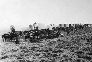 COLORADO GOLD RUSH, c1860. Covered wagons moving across the Great Plains on their