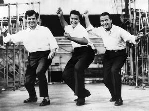 whats new b/dance twist c1962 entertainers dancing the twist