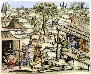 FRANCE: DAILY LIFE, 1517. Country life. Woodcut, French, 1517