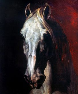 animals/gericault white horse head white horse oil canvas