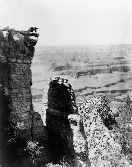 GRAND CANYON, c1907. A woman on the edge of Grand View Point overlooking the Grand