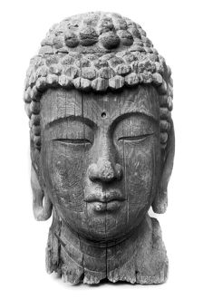 Head of Amida Buddha. Wood, formerly painted. Japanese, late 12th century. Heignt: 38