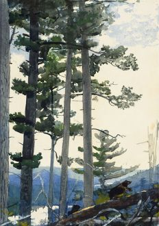 HOMER: OLD SETTLERS, 1892. Watercolor on paper, Winslow Homer, 1892