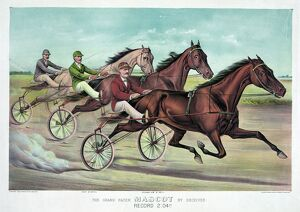 HORSE RACING, c1893. 'The Grand Pacer Mascot by Deceiver