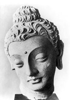 Limestone head from Gandhara (northwest Pakistan), 4th -5th century A.D.