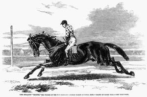 'Lord Zetland's 'Vedette,' the winner of the two thousand guineas