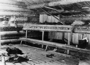 architecture/maine log cabin 1889 interior loggers camp
