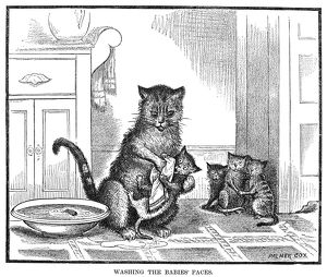 MOTHER CAT, 1880. /nWashing the babies' faces. Line engraving, 1880.