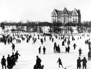 NYC: CENTRAL PARK, c1890. Photographed by John S. Johnston.