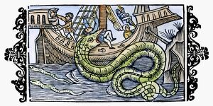 SEA MONSTER, 1555. One of the sea monsters once thought to dwell in the 'Sea of