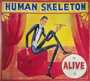 SIDESHOW POSTER, c1965. Sideshow poster by Snap Wyatt for the 'Human Skeleton