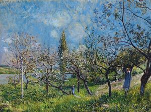SISLEY: ORCHARD IN SPRING. Oil on canvas, Alfred Sisley, 1881