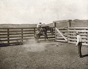 TEXAS: COWBOYS, c1907. Two cowboys breaking a horse in a corral on the LS Ranch in Texas