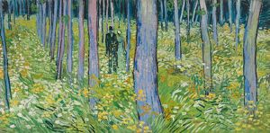 VAN GOGH: UNDERGROWTH. 'Undergrowth with Two Figures