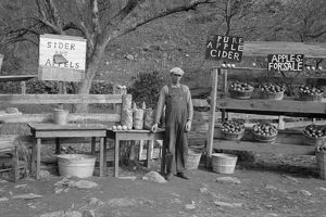 VIRGINIA: APPLE STAND, 1935. A cider and apple stand on the Lee Highway, Shenandoah