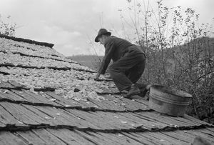VIRGINIA: APPLES, 1935. A man drying apples on a roof as a source of income, in