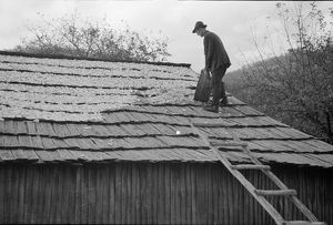 VIRGINIA: DRYING APPLES, 1935. A man drying apples on a roof in a village in Shenandoah
