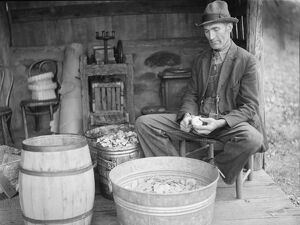 VIRGINIA: PEELING APPLES. John Nicholson peeling apples, at a house in Shenandoah