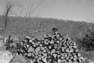 whats new/virginia woodpile 1935 man chopping wood village