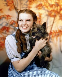 WIZARD OF OZ, 1939. Judy Garland as Dorothy, with her dog Toto, in the 1939 film