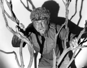 THE WOLFMAN, 1941. Lon Chaney Jr. in the title role of 'The Wolfman,' 1941.