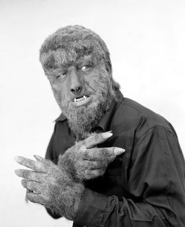 WOLFMAN, 1945. Lon Chaney, Jr., as the Wolfman in 'House of Dracula,' 1945.